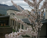 spring-at-lodge-img_1275